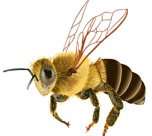 how to prevent bee stings
