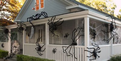Boo! Three Spooky Pests That Can Make Your Home A Halloween Nightmare