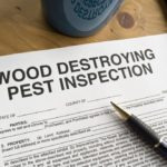 termite inspection report arizona
