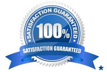 100 Guarantee Seal