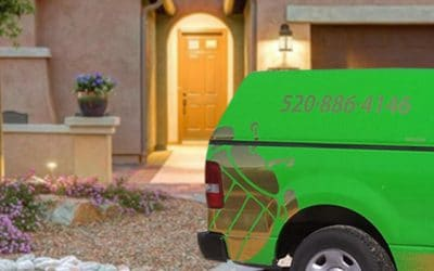 What It Takes To Find The Best Pest Control Company