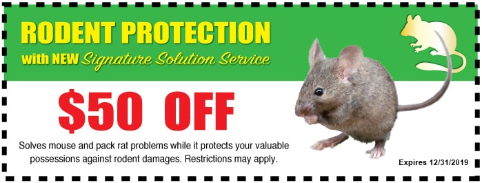 Rodent Protection